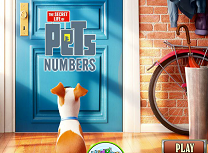 The Secret Life of Pets busca los numeros ocultos